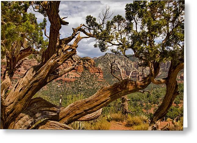 Sedona Landscape - Arizona Greeting Card by Jon Berghoff