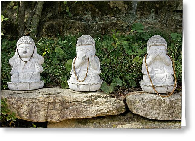 Hear No Evil Greeting Cards - See Hear Speak No Evil Greeting Card by Michele Burgess