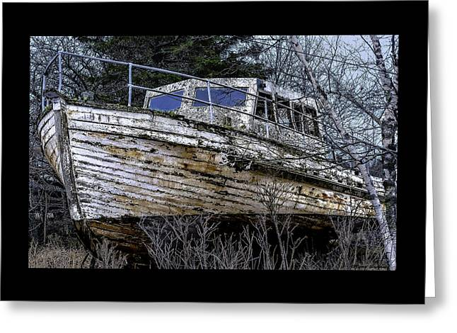 Seen Better Days Greeting Card by Marty Saccone
