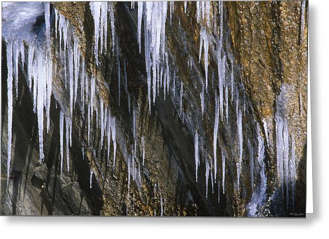 Seeping Ice  Greeting Card by Soli Deo Gloria Wilderness And Wildlife Photography