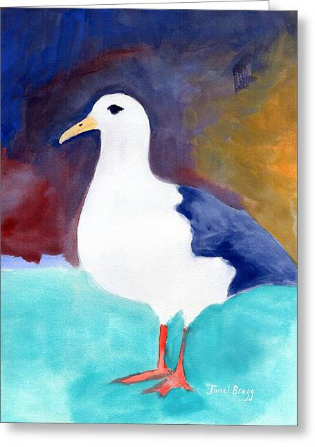 Segull From Anacortes 1 Greeting Card by Janel Bragg
