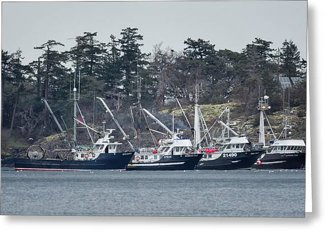 Seiners In Nw Bay Greeting Card by Randy Hall