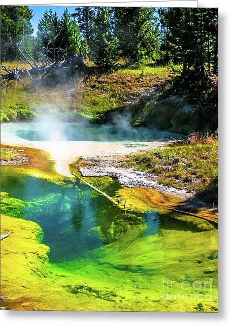 Seismograph Pool In Yellowstone Greeting Card