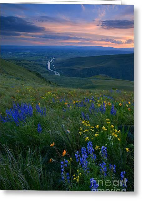 Selah Sunset Greeting Card by Mike  Dawson