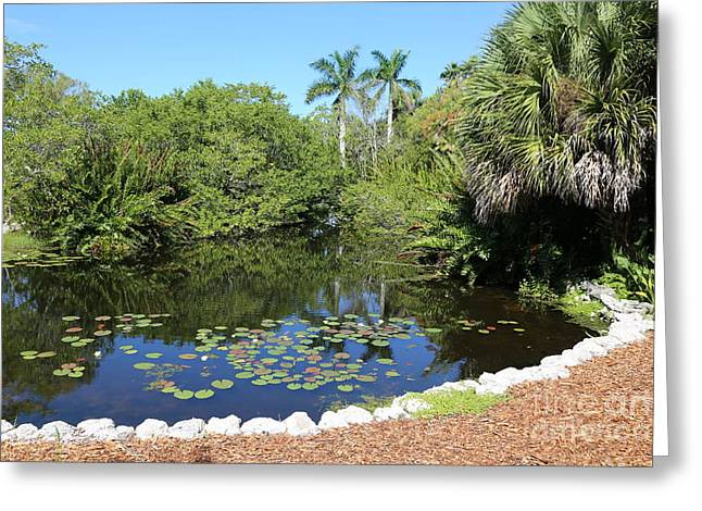 Selby Botanical Gardens Lily Pond Greeting Card