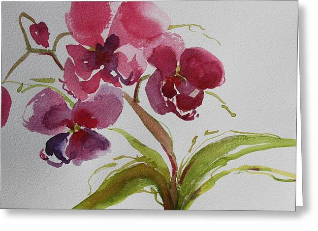 Selby Orchid II Greeting Card