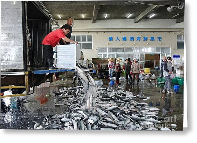 Greeting Card featuring the photograph Selling Grey Mullet Fish In Taiwan by Yali Shi