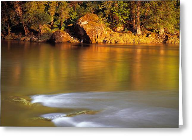 Selway River Greeting Card by Leland D Howard