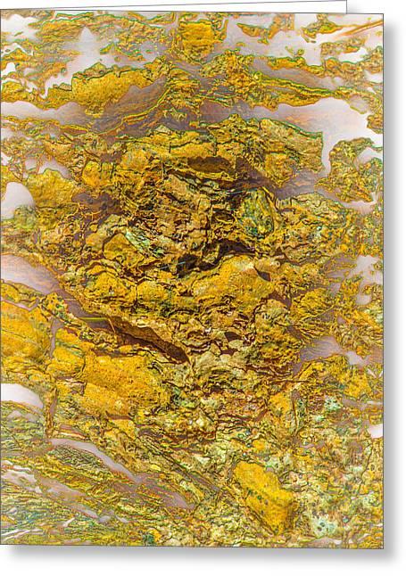 Semi Translucent Bark Abstract Greeting Card