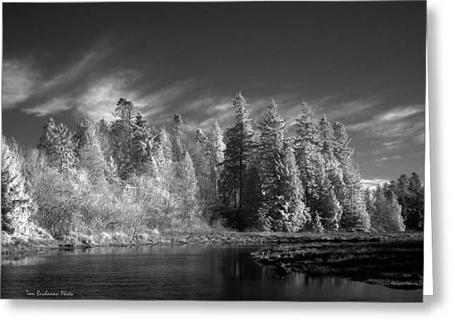 Semiahmoo River Greeting Card by Tom Buchanan