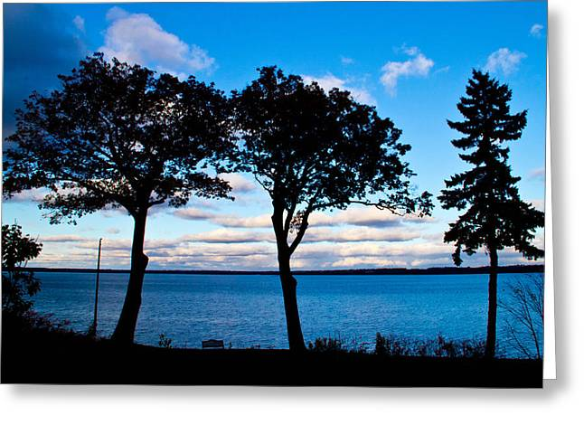 Seneca Lake Ny Greeting Card by Tom Molczynski