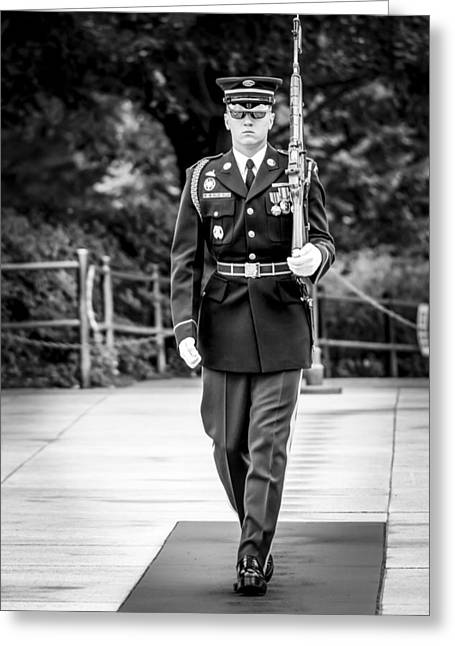 Sentinel At The Tomb Of The Unknowns Greeting Card by David Morefield