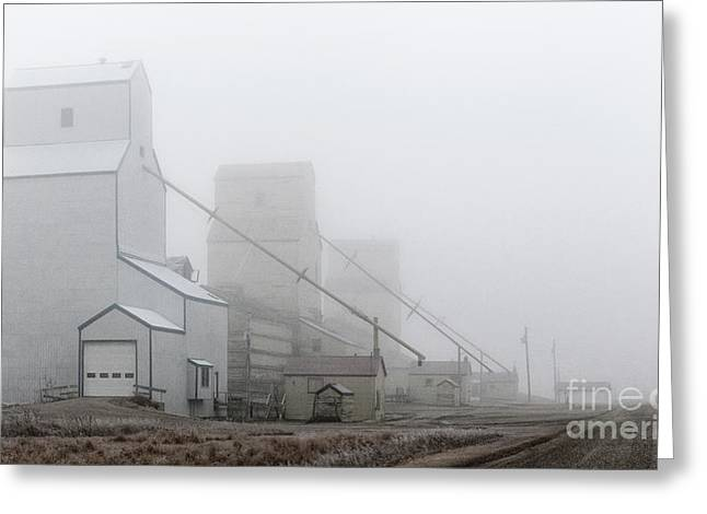 Greeting Card featuring the photograph Sentinels In The Fog by Brad Allen Fine Art