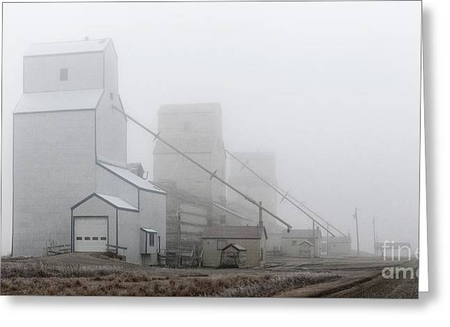 Sentinels In The Fog Greeting Card