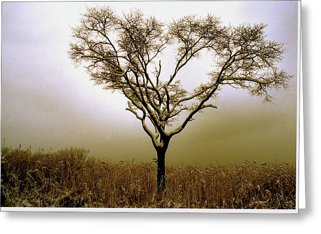 Sepia Tree Greeting Card