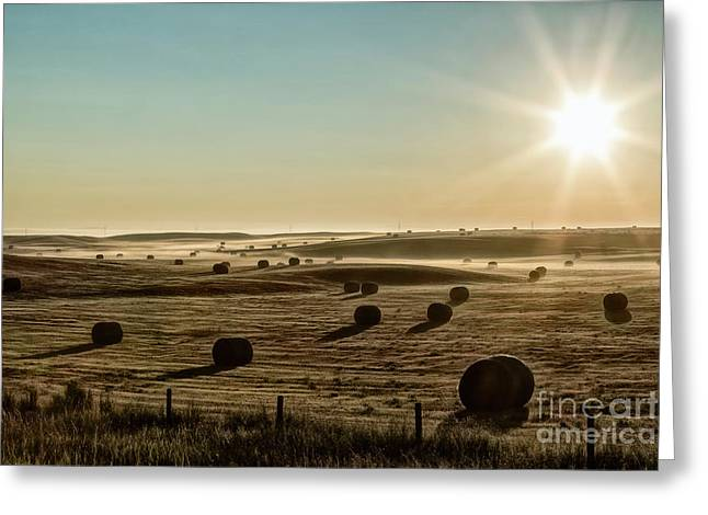 Greeting Card featuring the photograph September Hay by Brad Allen Fine Art