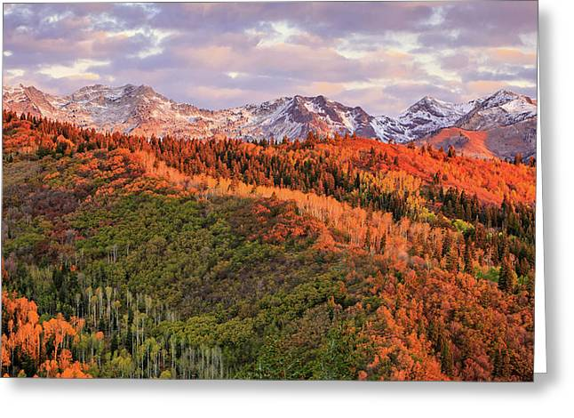 Greeting Card featuring the photograph September Snow In The Wasatch Back. by Johnny Adolphson
