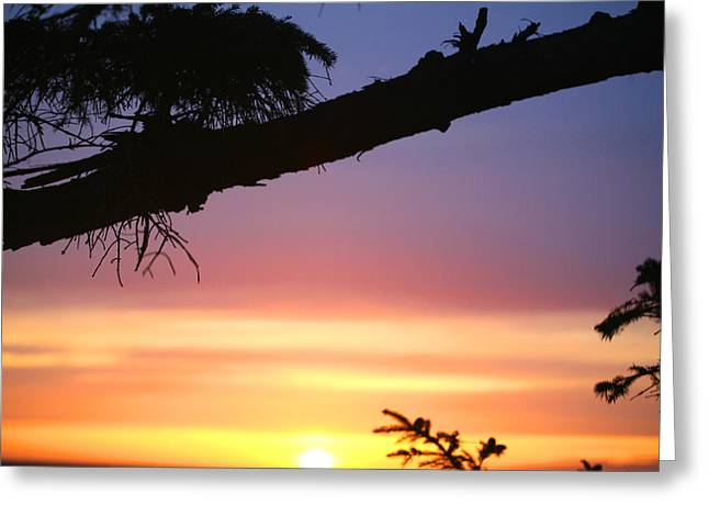 Sequim Sunset Ss 2007 Greeting Card by Mary Gaines