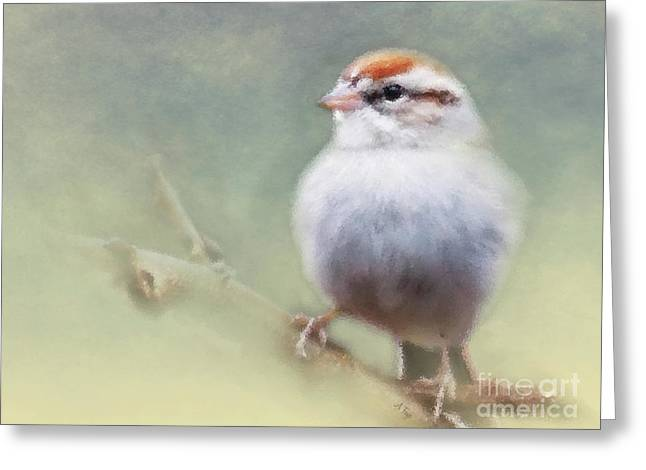 Serendipitous Sparrow  Greeting Card
