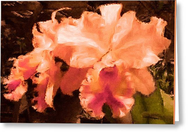 Serendipity Orchid Greeting Card