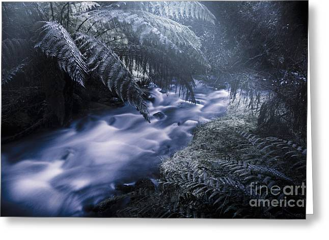 Serene Moonlit River Greeting Card
