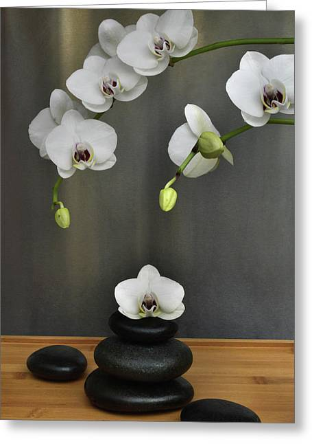 Greeting Card featuring the photograph Serene Orchid by Terence Davis