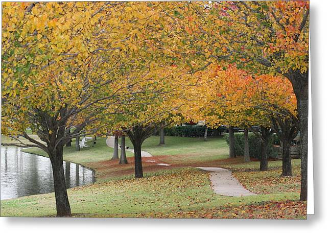 Serene Path Greeting Card by David Wahome