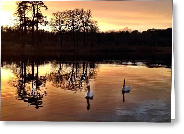 Serene Twilight Greeting Card by Elizabeth Wuebker