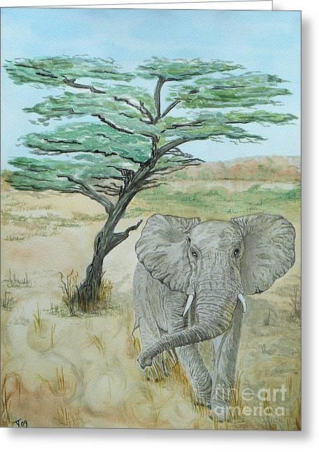 Serengeti Elephant Greeting Card by Yvonne Johnstone