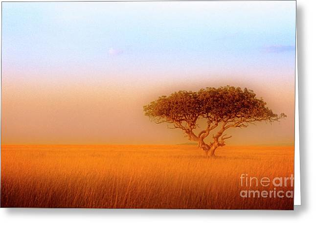 Greeting Card featuring the photograph Serengeti by Scott Kemper