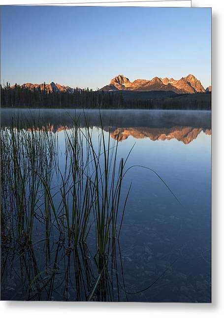 Serenity At Little Redfish Lake Stanley Idaho Greeting Card by Vishwanath Bhat