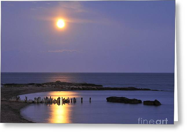Greeting Card featuring the photograph Serenity Connecticut Coastline by Cindy Lee Longhini