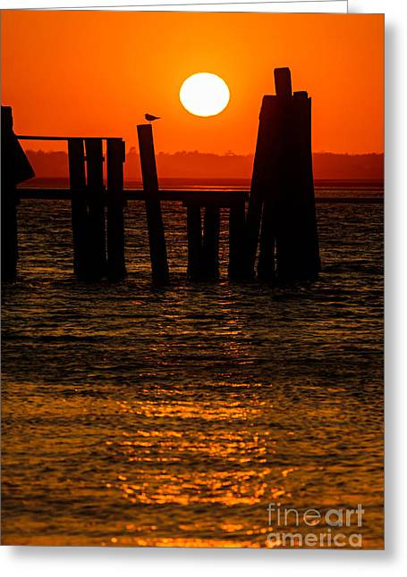 Greeting Card featuring the photograph Serenity  by DJA Images