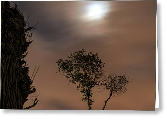 Greeting Card featuring the photograph Serenity... by Dubi Roman