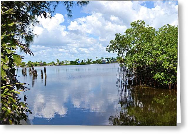 Greeting Card featuring the photograph Serenity In Matlacha Florida by Timothy Lowry