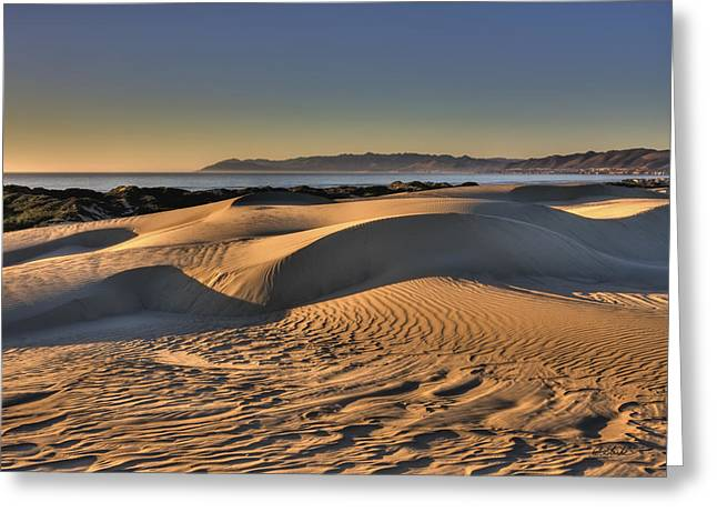 Serenity In The Dunes Greeting Card