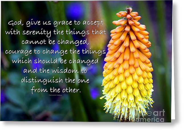 Serenity Prayer Greeting Card by Nancy E Stein