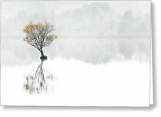 Serenity Song Greeting Card