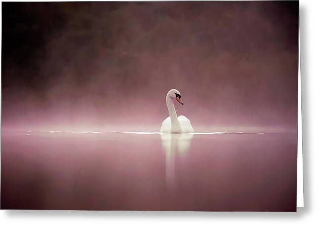 Serenity - Swan On A Foggy Sunset Greeting Card