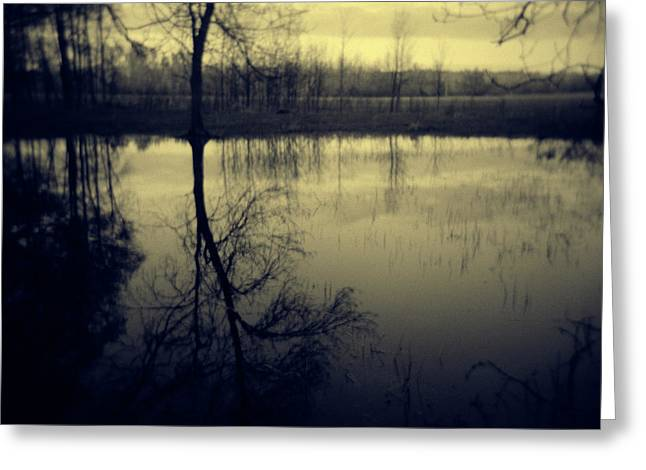 Series Wood And Water 5 Greeting Card