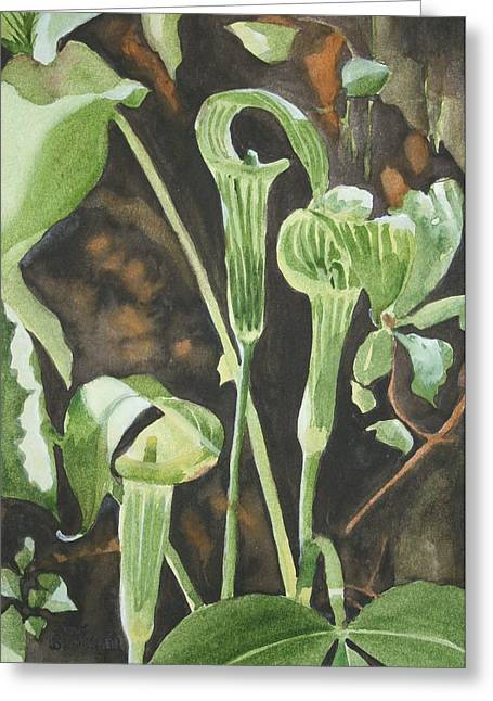 Jack In The Pulpit Greeting Cards - Sermon In The Woods Greeting Card by Jean Blackmer