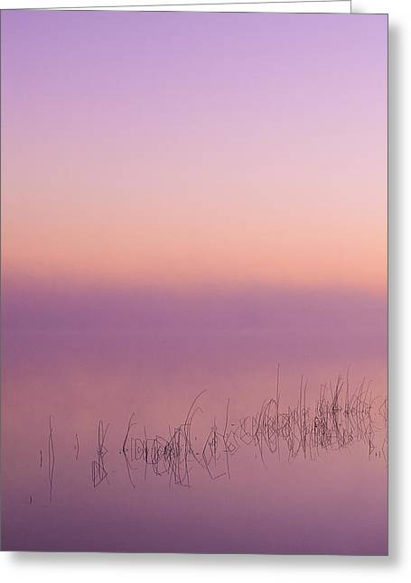 Sesachacha Mist - Nantucket Greeting Card by Henry Krauzyk