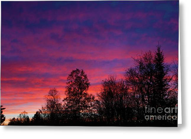 Setting Colors Greeting Card by Lloyd Alexander