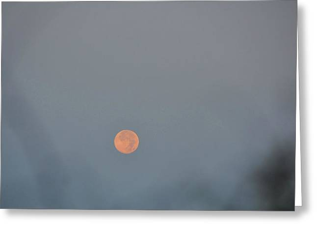 Setting Moon Greeting Card by JAMART Photography