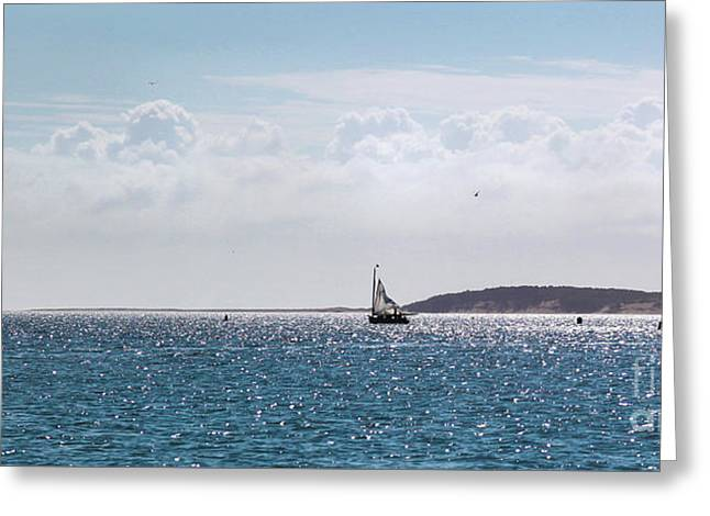 Greeting Card featuring the photograph Setting Sail by Michelle Wiarda