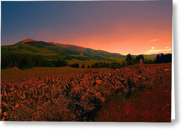 Setting Sun In Crested Butte Greeting Card by Tom Potter