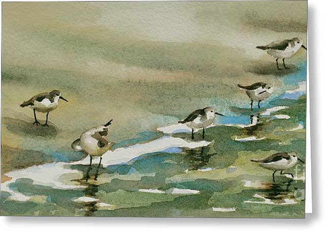 Seven Sandpipers At The Seashore  Greeting Card