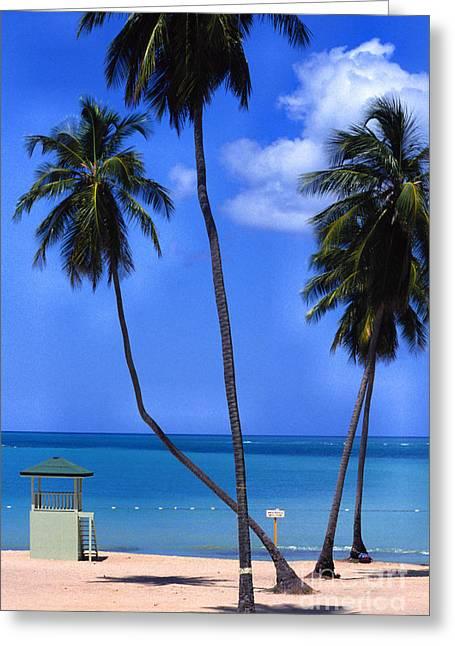 Seven Seas Beach Puerto Rico Greeting Card by Thomas R Fletcher