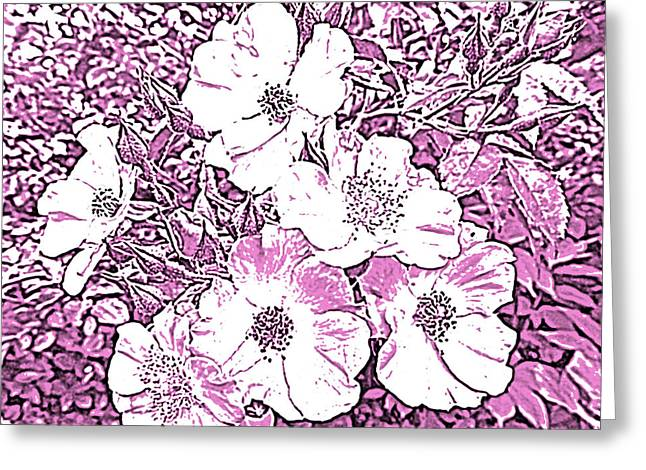 Seven Sisters Rose In Pen And Ink Greeting Card by Marian Bell