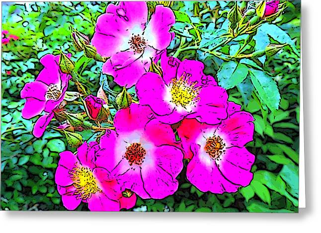 Seven Sisters Rose Variant Greeting Card by Marian Bell